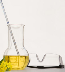 Beaker of oil with canola flowers and safety goggles - biofuels